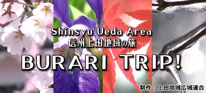 dvd-menu-02